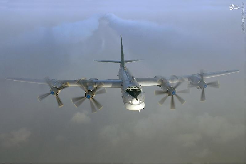 هواپیمای Tu-95